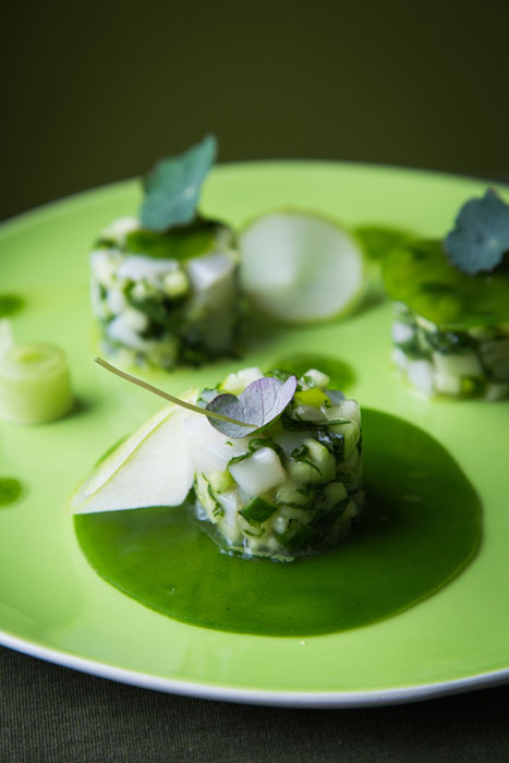 Michelin Star Chef Food - 12